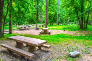 Campground with picnic table and camp sites.