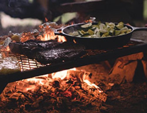 Family Camping Food & Cooking Guide