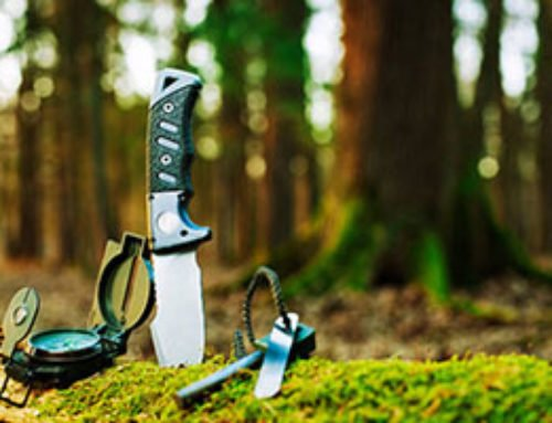 10 Best Camping Knives & Buyer's Guide