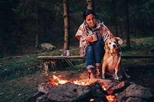 Camping with dogs around a campfire.