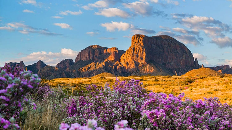 Big Bend National State Park camping
