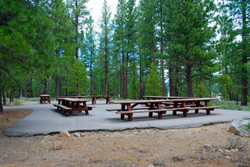 Emigrant Campground California