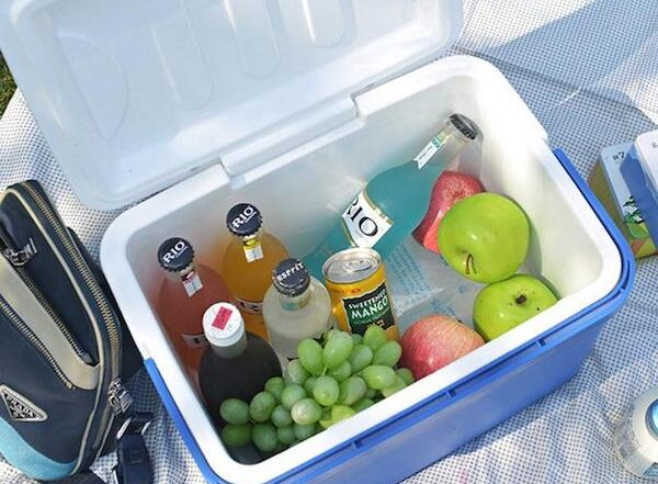 Best Camping Coolers