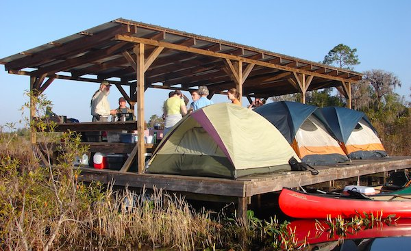 Best places to go camping in Georgia,Okefenokee Swamp